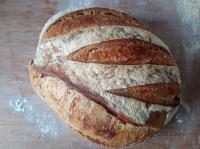Picture of SOURDOUGH Bread - Nearly White 800g (certified organic)